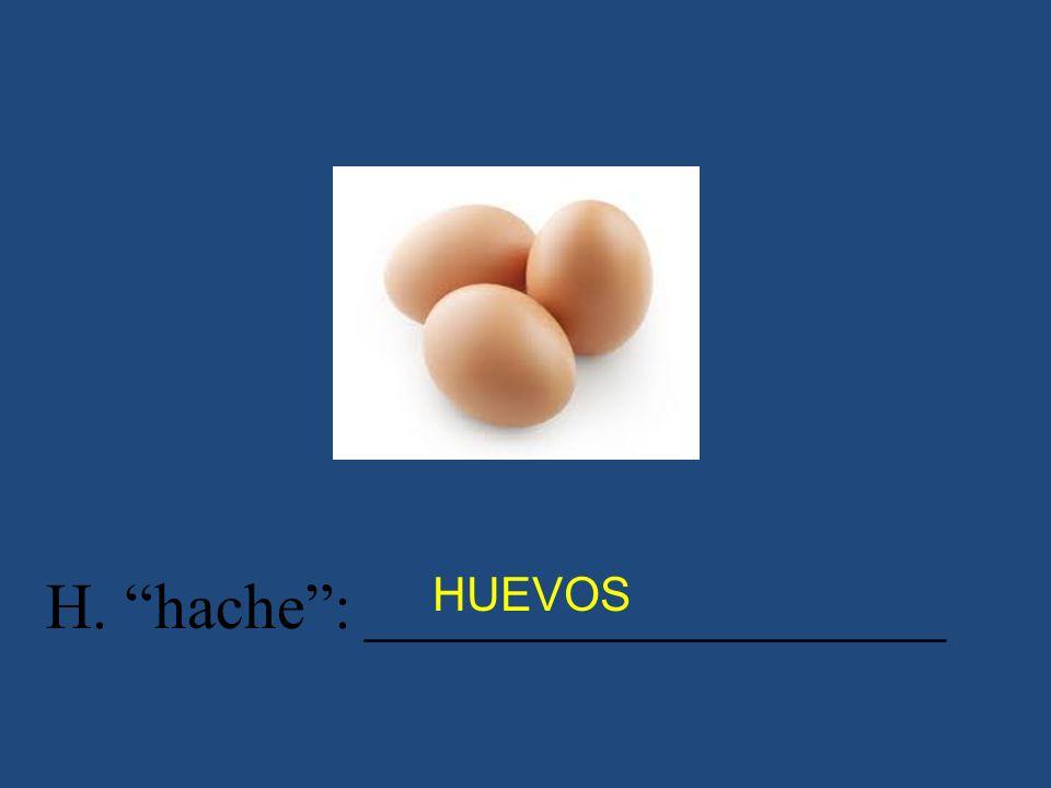 H. hache : __________________