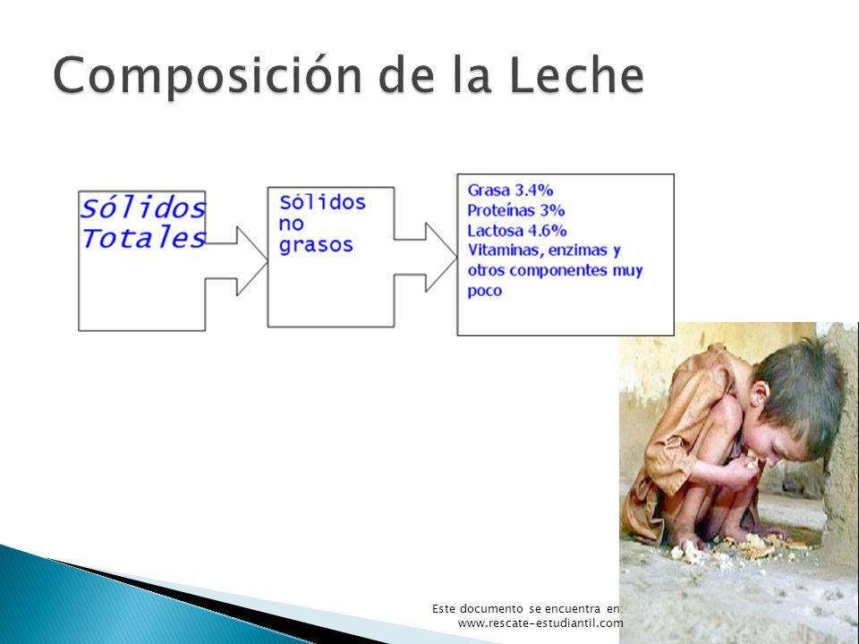 Composición de la Leche