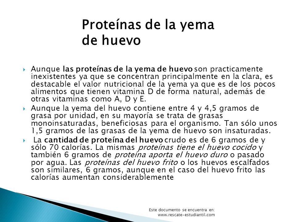 Proteínas de la yema de huevo