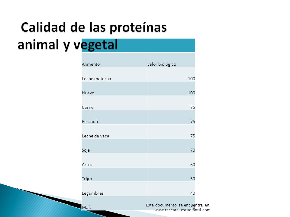 Calidad de las proteínas animal y vegetal