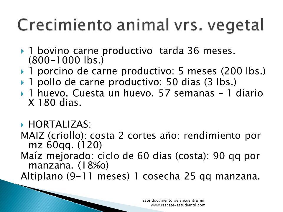 Crecimiento animal vrs. vegetal