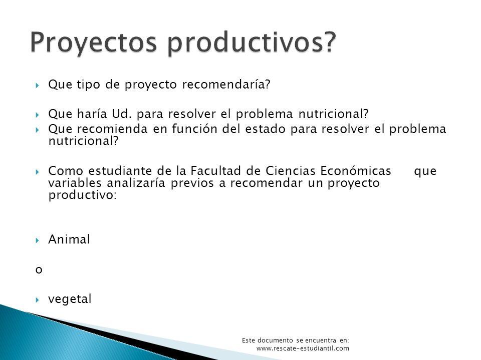 Proyectos productivos