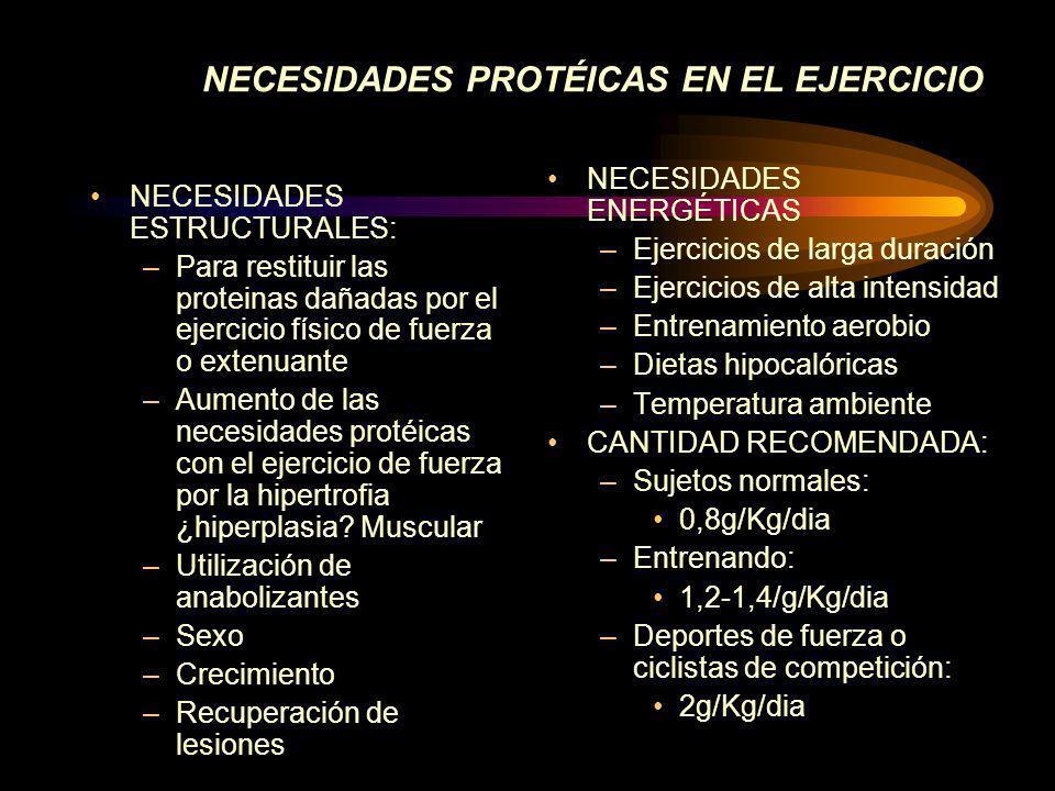NECESIDADES PROTÉICAS EN EL EJERCICIO