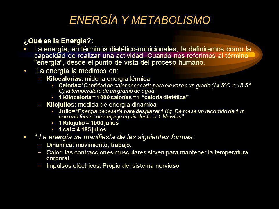 ENERGÍA Y METABOLISMO ¿Qué es la Energía :