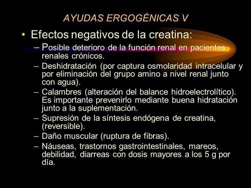 Efectos negativos de la creatina: