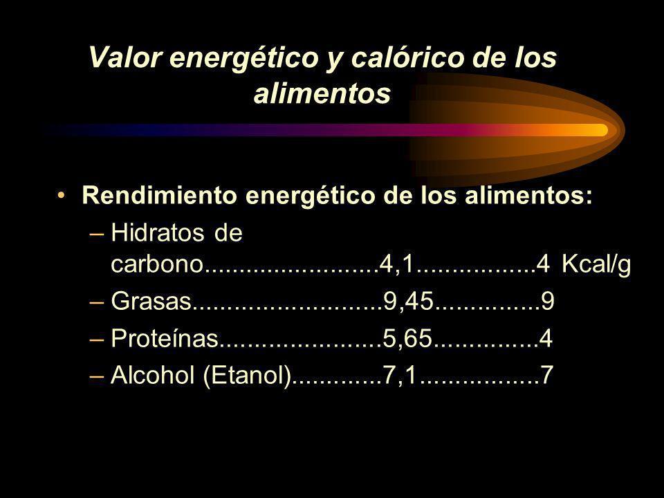 Valor energético y calórico de los alimentos