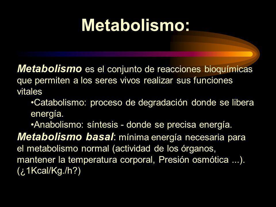 Metabolismo: Metabolismo es el conjunto de reacciones bioquímicas que permiten a los seres vivos realizar sus funciones vitales.