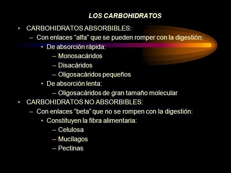 LOS CARBOHIDRATOS CARBOHIDRATOS ABSORBIBLES: Con enlaces alfa que se pueden romper con la digestión: