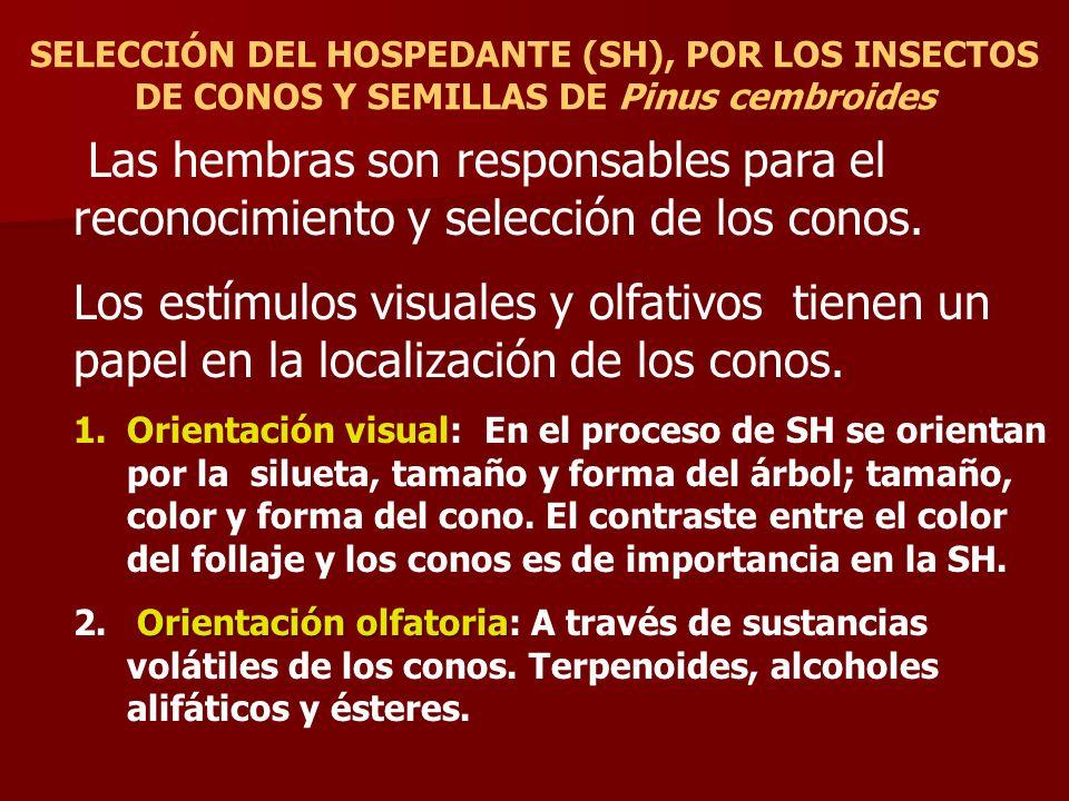 SELECCIÓN DEL HOSPEDANTE (SH), POR LOS INSECTOS DE CONOS Y SEMILLAS DE Pinus cembroides