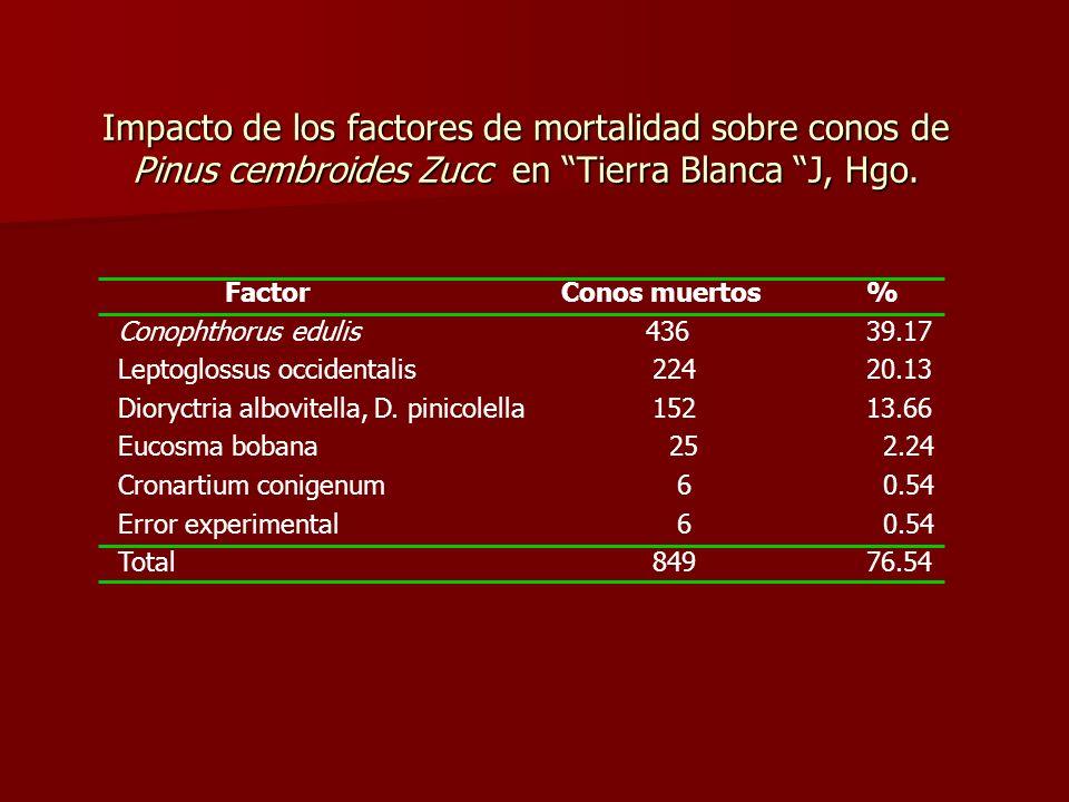 Impacto de los factores de mortalidad sobre conos de Pinus cembroides Zucc en Tierra Blanca J, Hgo.