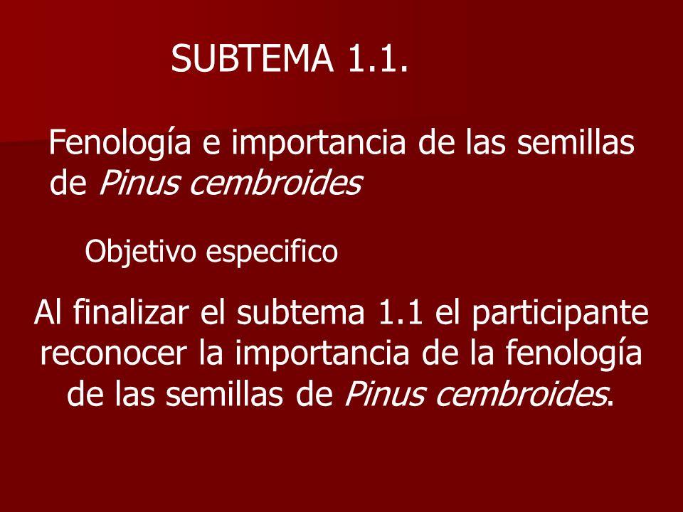 SUBTEMA 1.1. Fenología e importancia de las semillas
