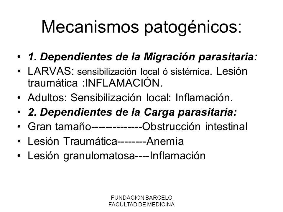 Mecanismos patogénicos: