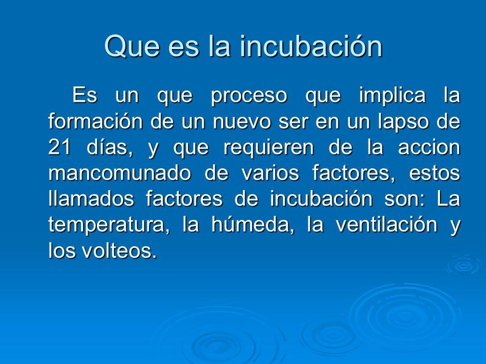 Que es la incubación