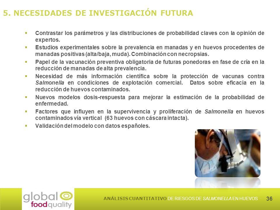 5. NECESIDADES DE INVESTIGACIÓN FUTURA