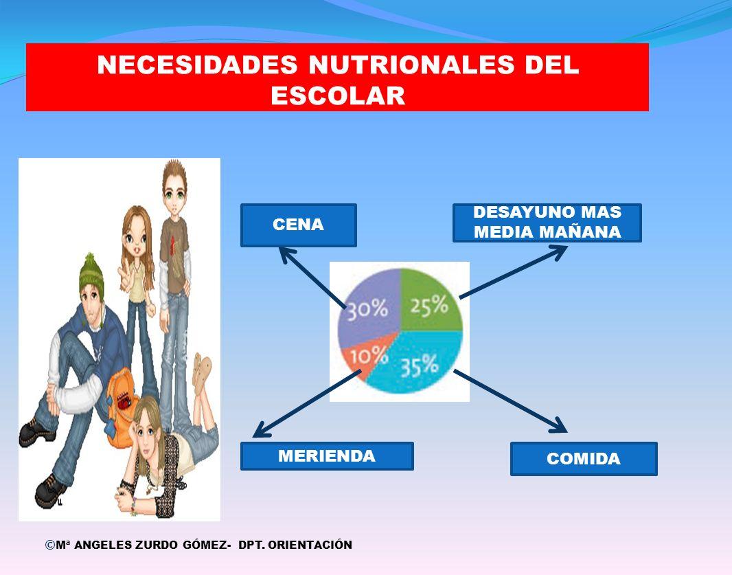 NECESIDADES NUTRIONALES DEL ESCOLAR