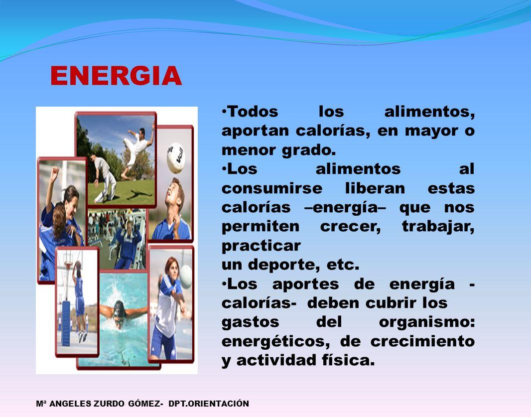 ENERGIA Todos los alimentos, aportan calorías, en mayor o menor grado.