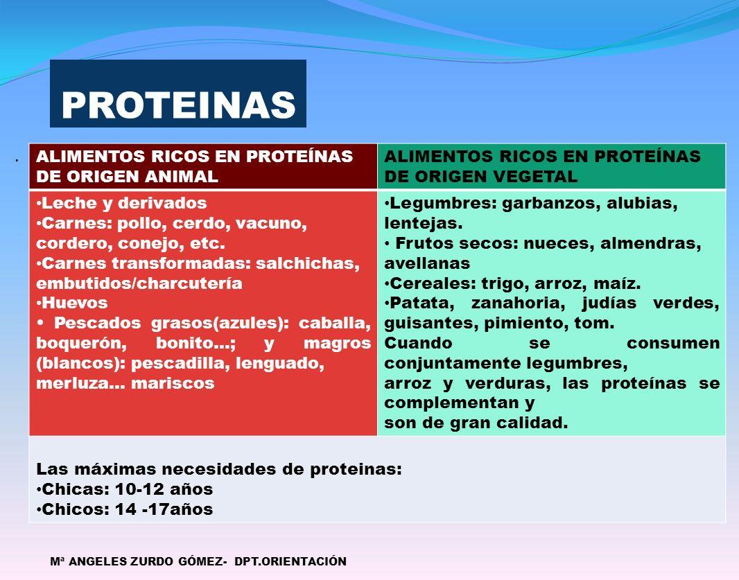 PROTEINAS ALIMENTOS RICOS EN PROTEÍNAS DE ORIGEN ANIMAL