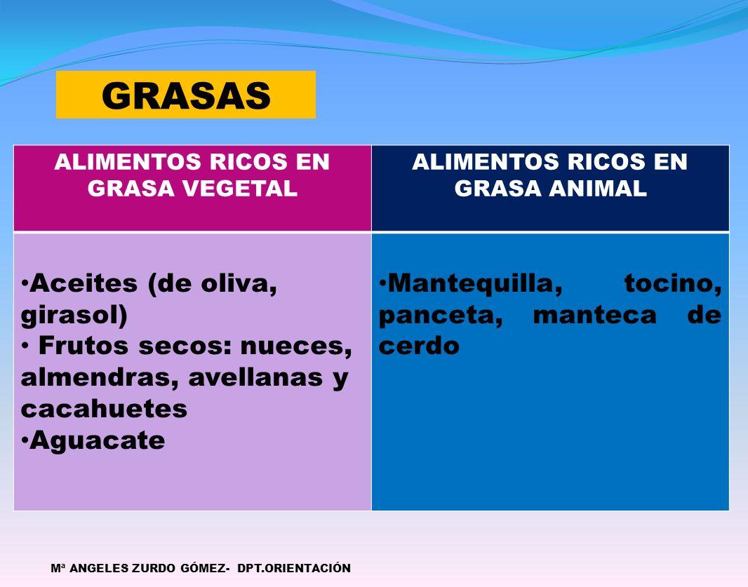 ALIMENTOS RICOS EN GRASA VEGETAL ALIMENTOS RICOS EN GRASA ANIMAL