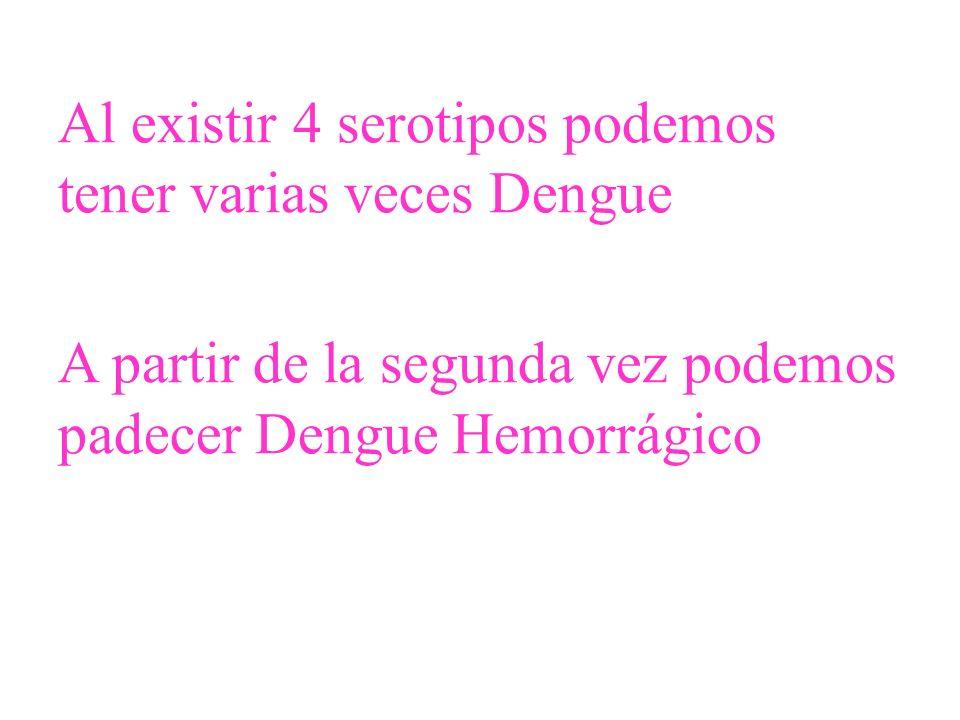 Al existir 4 serotipos podemos tener varias veces Dengue