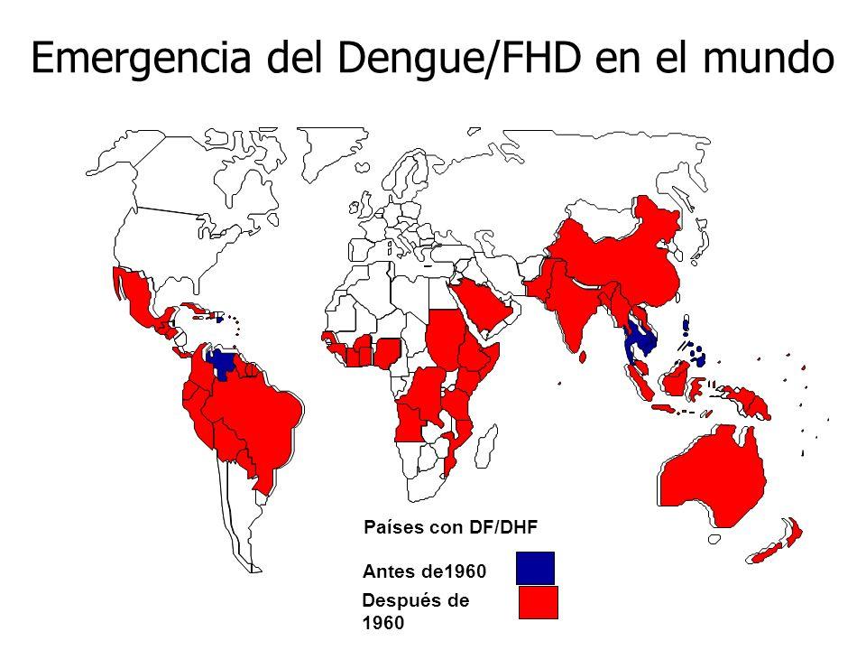 Emergencia del Dengue/FHD en el mundo