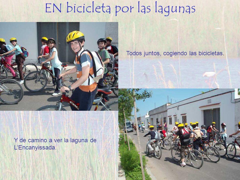 EN bicicleta por las lagunas