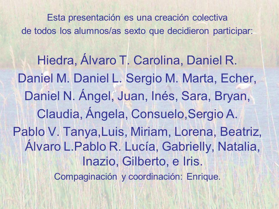 Hiedra, Álvaro T. Carolina, Daniel R.