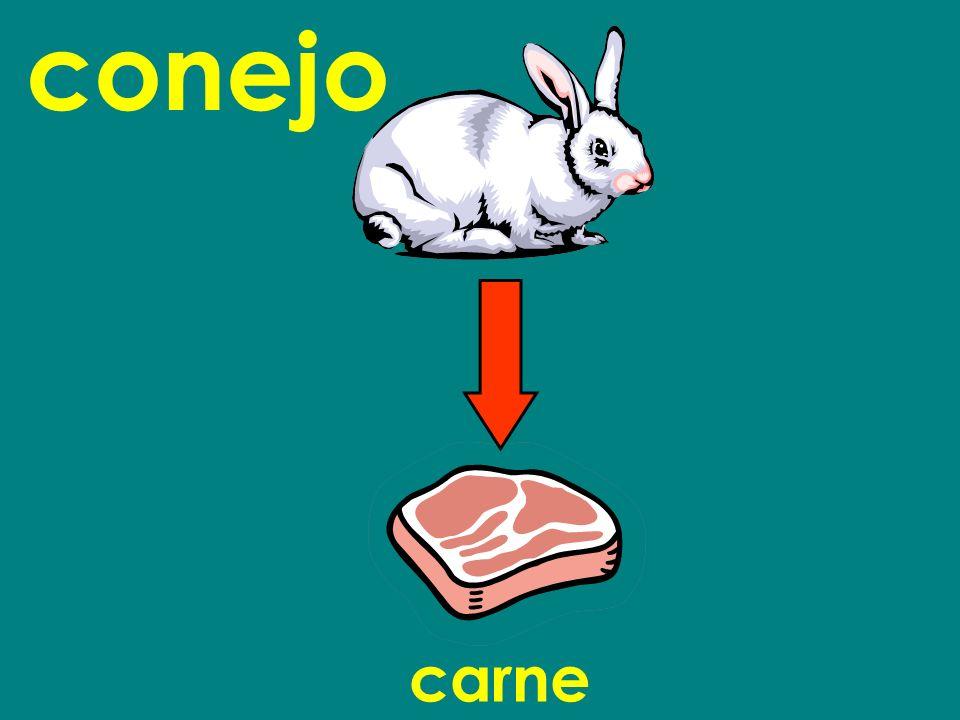 conejo carne