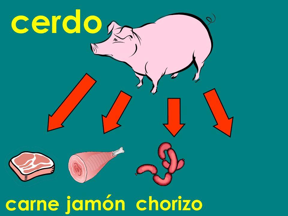 cerdo carne jamón chorizo