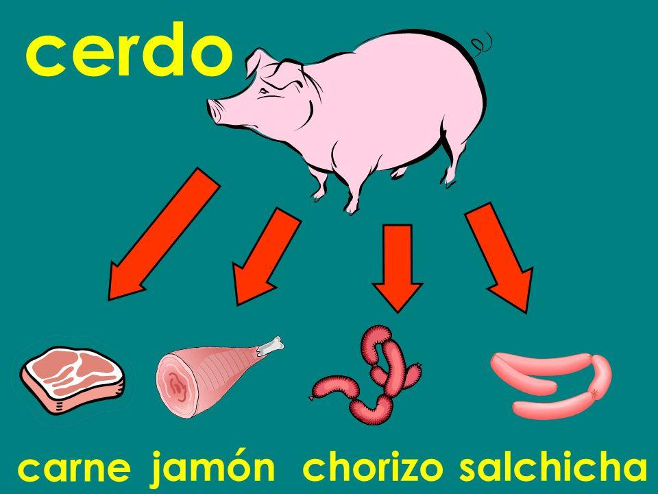 cerdo carne jamón chorizo salchicha