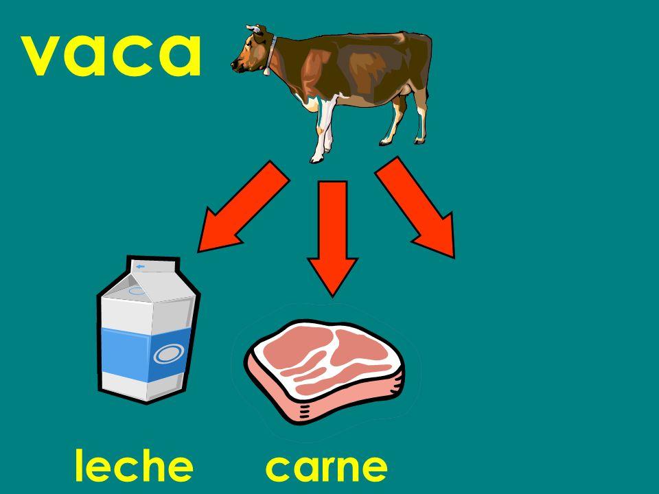 vaca leche carne