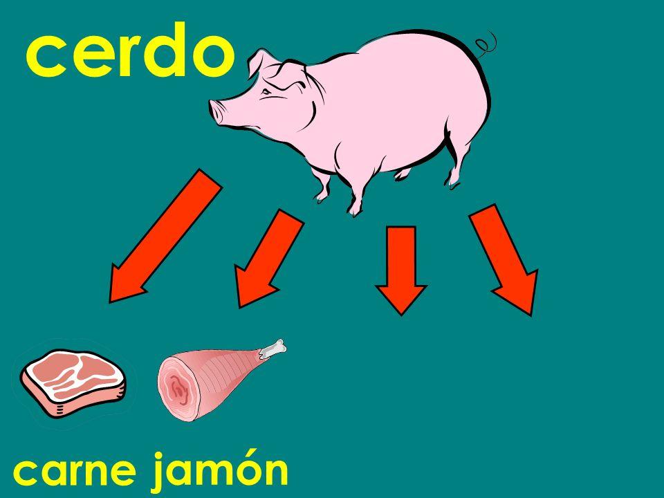 cerdo carne jamón