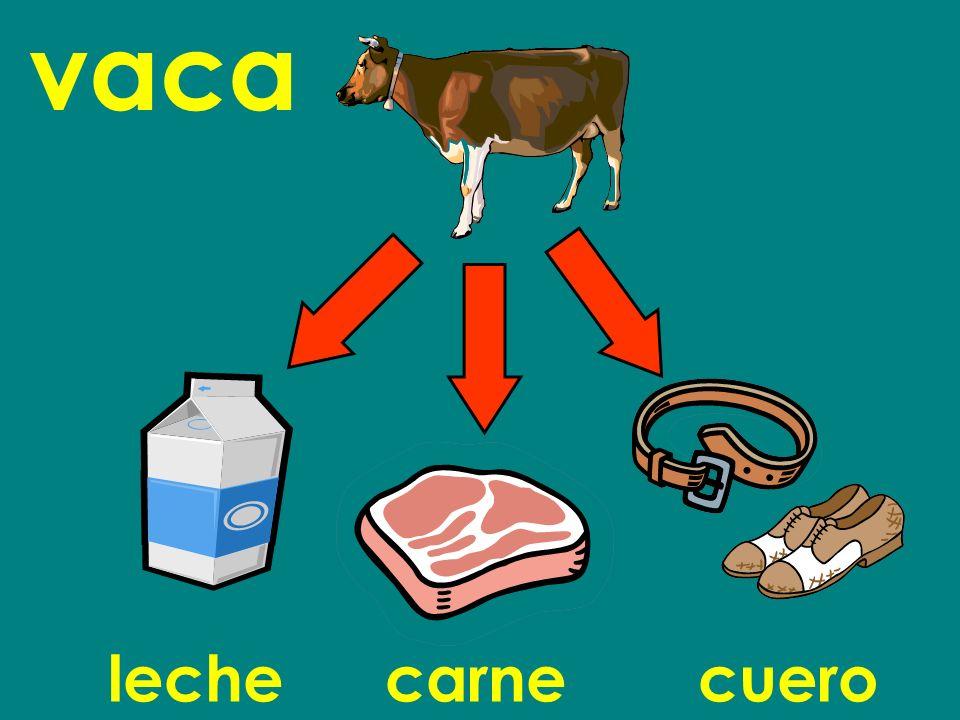 vaca leche carne cuero