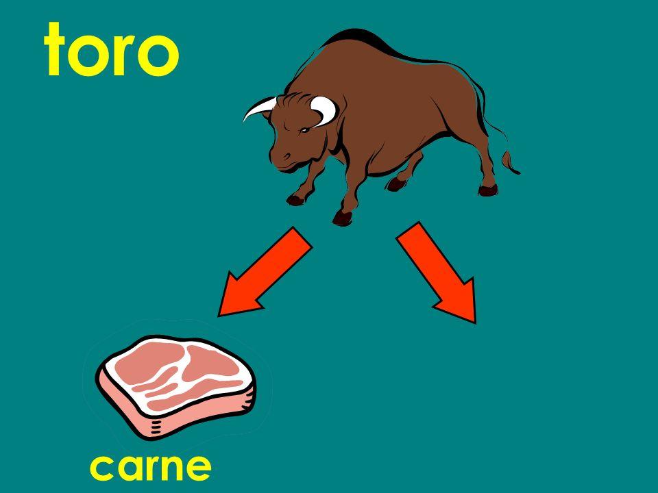 toro carne