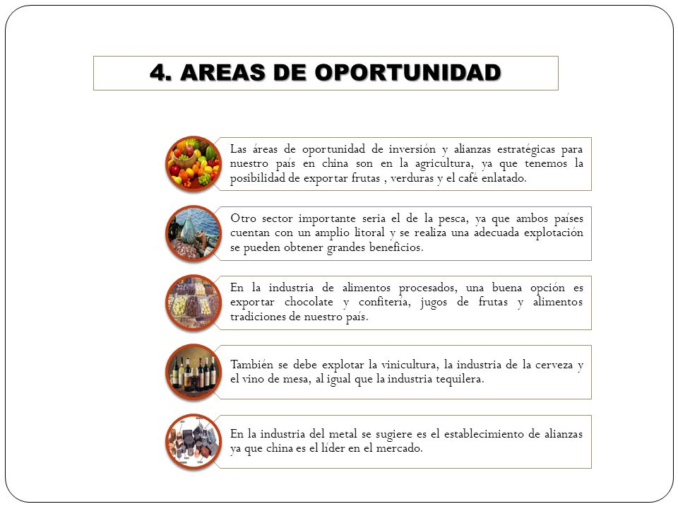 4. AREAS DE OPORTUNIDAD