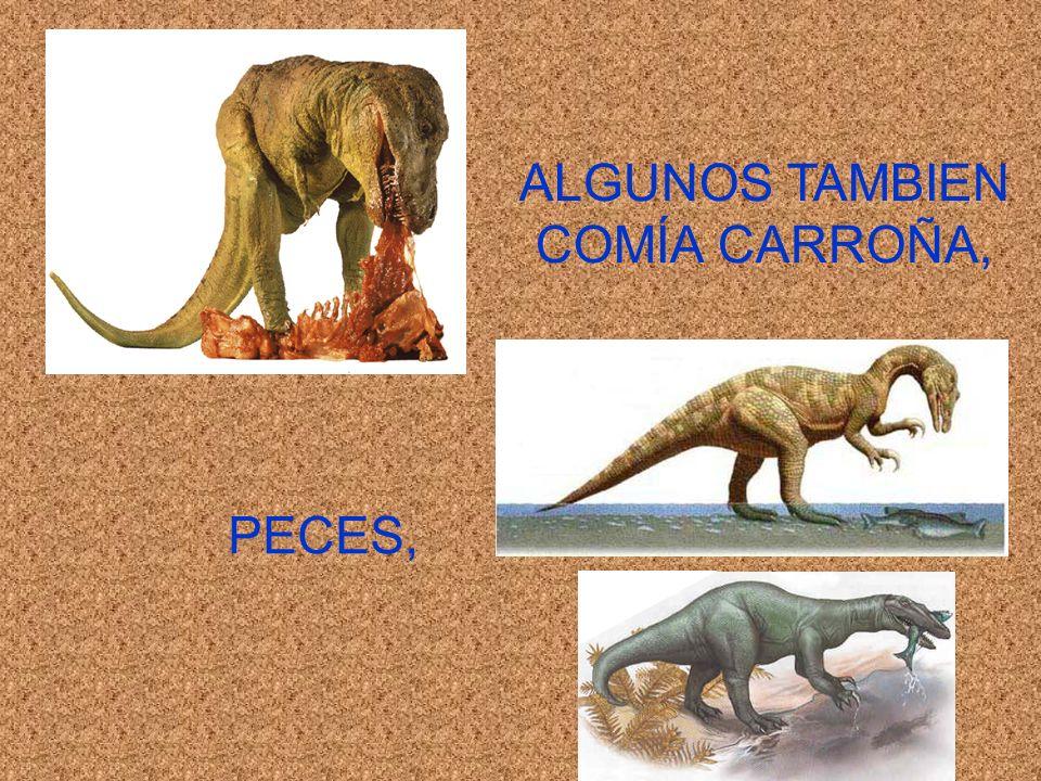 ALGUNOS TAMBIEN COMÍA CARROÑA,