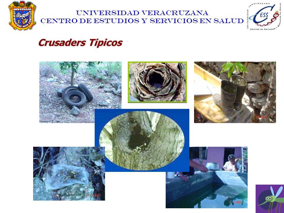 Crusaders Tipicos