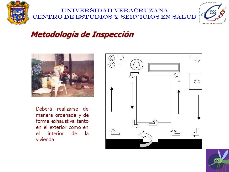 Metodología de Inspección