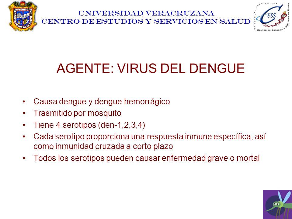 AGENTE: VIRUS DEL DENGUE