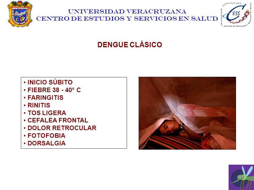 DENGUE CLÁSICO INICIO SÚBITO FIEBRE 38 - 40° C FARINGITIS RINITIS