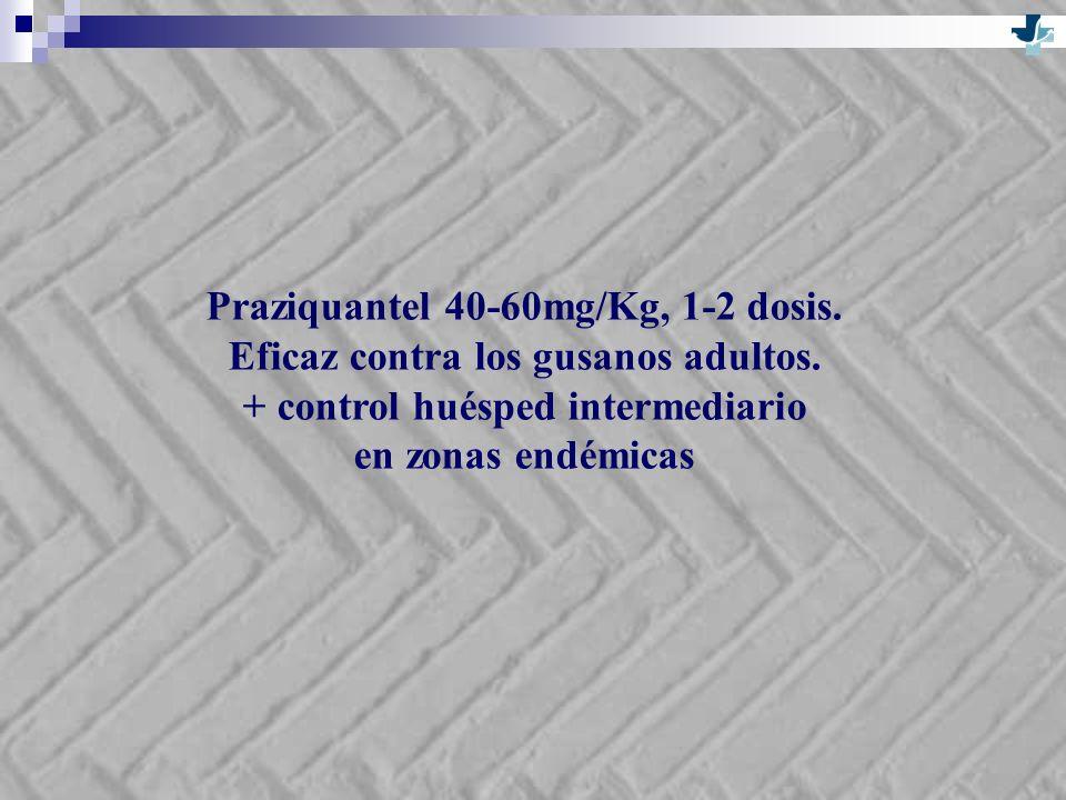 Praziquantel 40-60mg/Kg, 1-2 dosis. Eficaz contra los gusanos adultos.