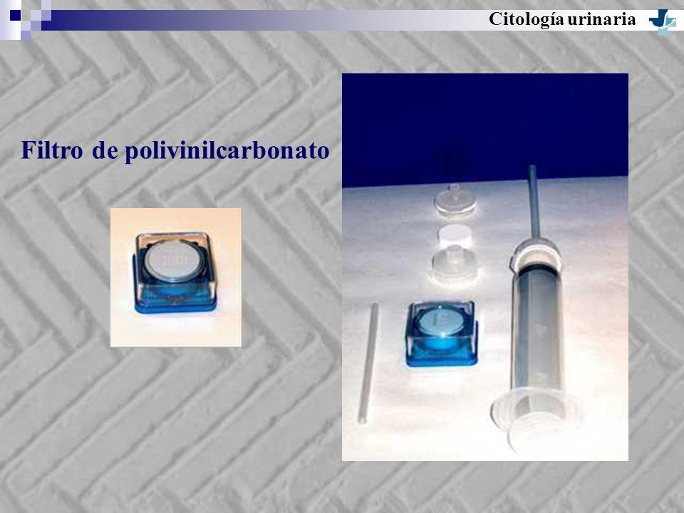 Filtro de polivinilcarbonato