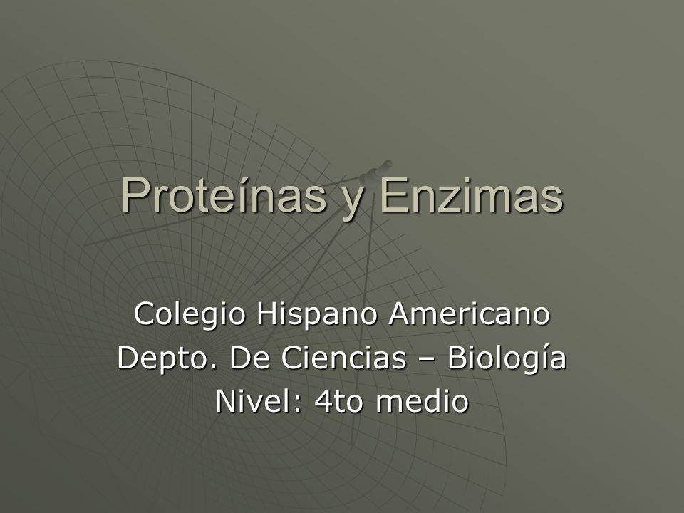 Proteínas y Enzimas Colegio Hispano Americano