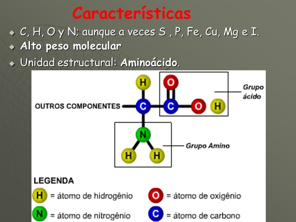 Características C, H, O y N; aunque a veces S , P, Fe, Cu, Mg e I.