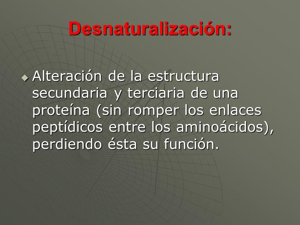 Desnaturalización: