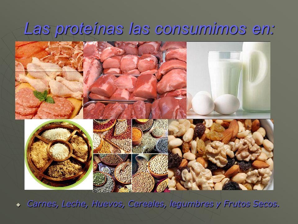 Las proteínas las consumimos en: