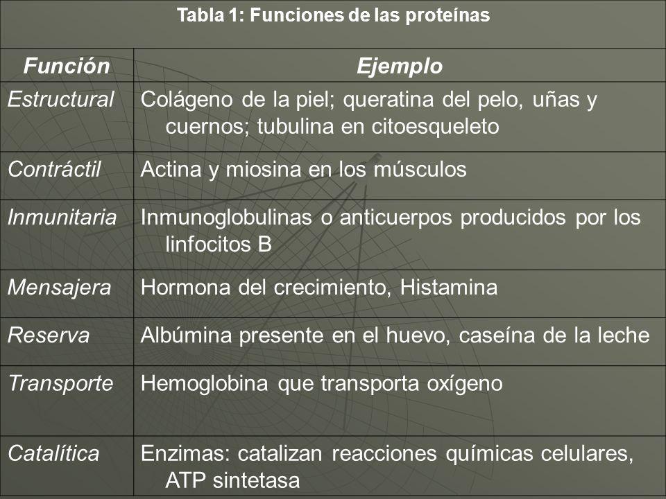 Tabla 1: Funciones de las proteínas