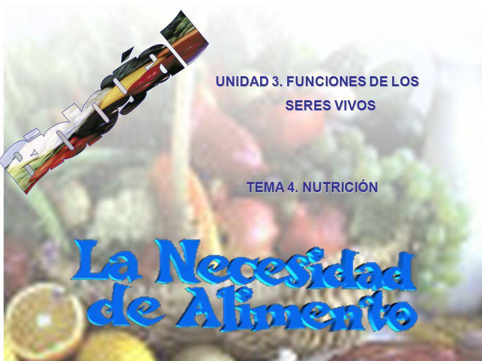 UNIDAD 3. FUNCIONES DE LOS
