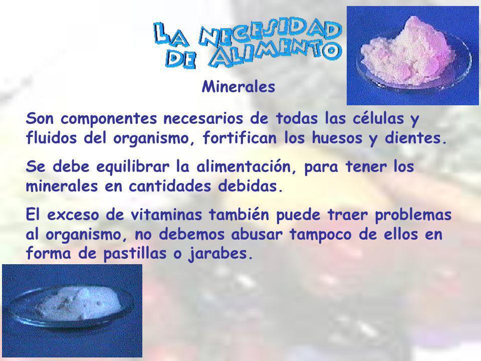 Minerales Son componentes necesarios de todas las células y fluidos del organismo, fortifican los huesos y dientes.
