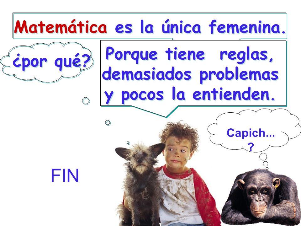 FIN Matemática es la única femenina.