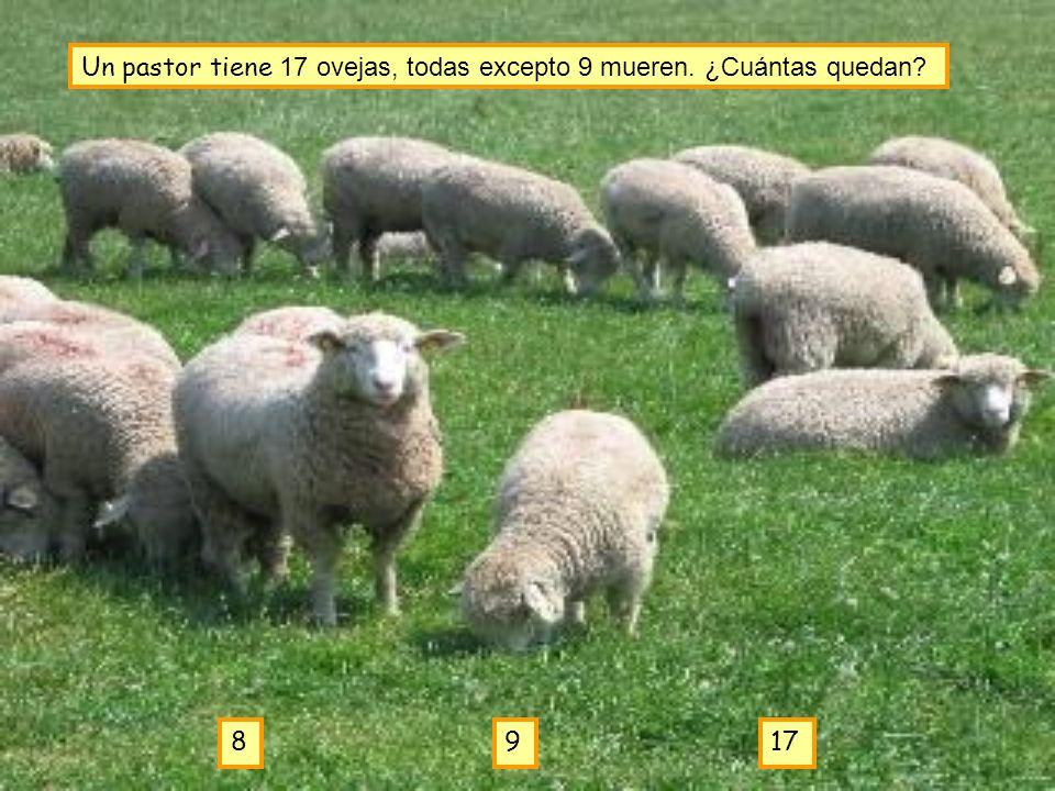 Un pastor tiene 17 ovejas, todas excepto 9 mueren. ¿Cuántas quedan
